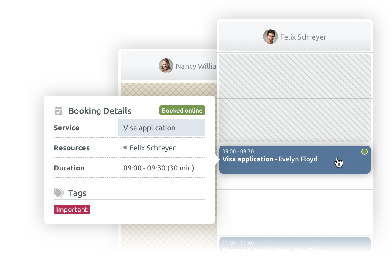 online scheduling for embassies and government